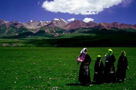 新疆西藏高考用的全国卷还是本地的试卷难度怎么样