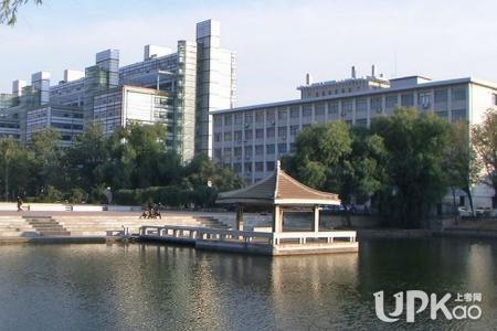2019天津大学着力打造的优势学科及特色专业是什么