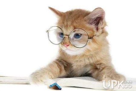 高中学生语文功底不好想看课外书又怕浪费时间怎么办