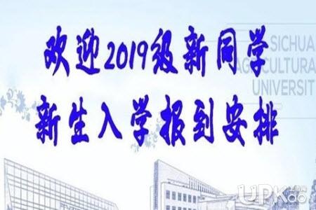 四川农业大学2019年研究生新生入学报到流程(最新)