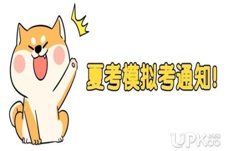 http://wsbm.sdzk.cn山东省2020年夏季高考模拟考试准考证打印