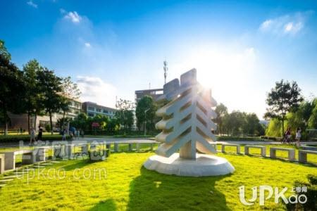 华东师范大学2020年综合评价录取改革试点招生简章