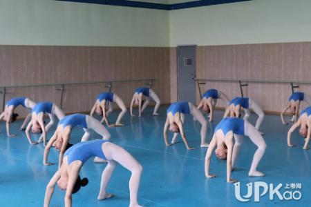2021年黑龙江省普通高校艺术类专业招生舞蹈表演专业统考报名条件