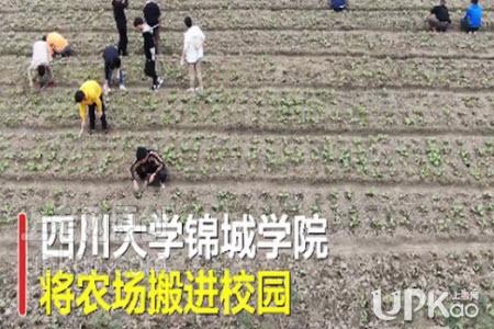 四川大学锦城学院将种田纳入必修课是真的吗