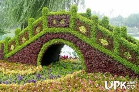 园艺技术专业的就业前景怎么样