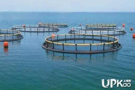 水产养殖学专业的就业方向有哪些
